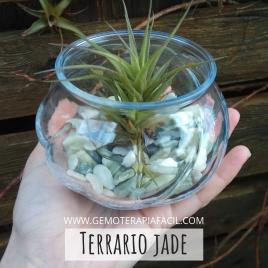 Terrario jade