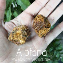 alofana bruto gemoterapia facil