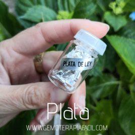 plata de ley gemoterapia facil