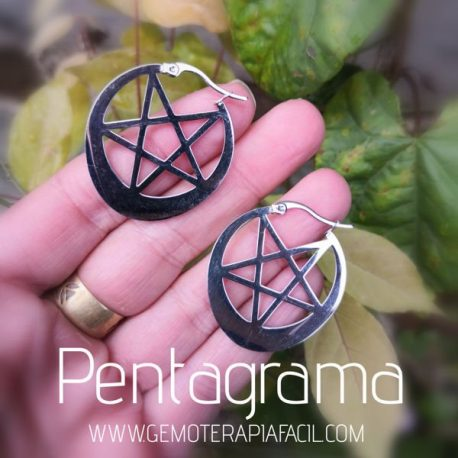 pendientes pentagrama acero gemoterapia facil