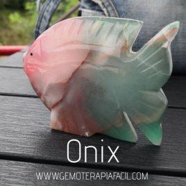 pez de onix gemoterapia facil