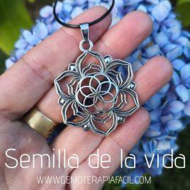 colgante semilla de la vida flor de loto