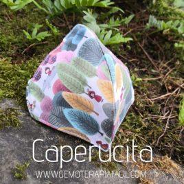 mascarilla Reutilizable caperucita