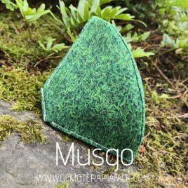 mascarilla Reutilizable musgo