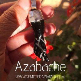 puño de azabache asturiano gigante gemoterapia facil