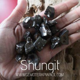 Shungit cristalizada gemoterapia facil