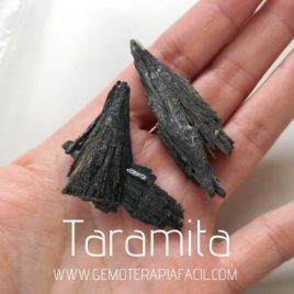 Taramita natural gemoterapia facil