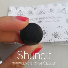 placa Shungit para el móvil eliminar radiación gemoterapia facil
