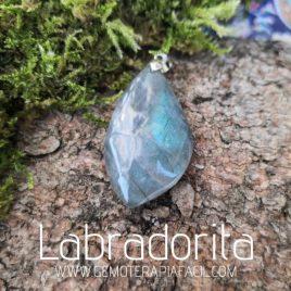 colgante labradorita azul gemoterapia facil