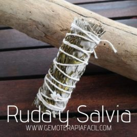 atado sahumerio de ruda y Salvia gemoterapia facil