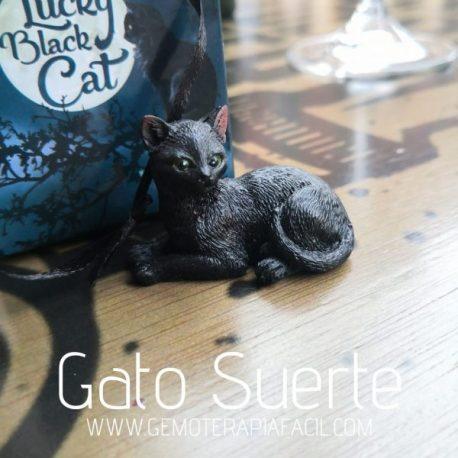 gato negro de la suerte gemoterapia facil